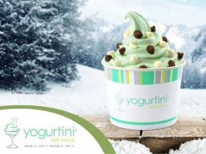 Frozen yogurt in a branded cup surrounded by snow