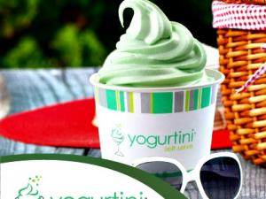 a branded cup of frozen yogurt sitting on a picnic bench with sunglasses and a picnic basket