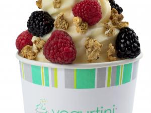 branded cup of vanilla yogurt with berries and granola pieces